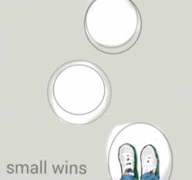 small wins - dctl